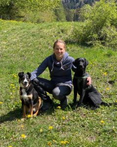 Sam Dogs - search and mantrailing - hundeschule
